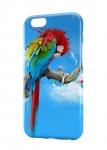 Чехол Попугай для iPhone и др. (любые модели)