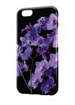 Чехол Фиолетовая орхидея для всех моделей телефонов